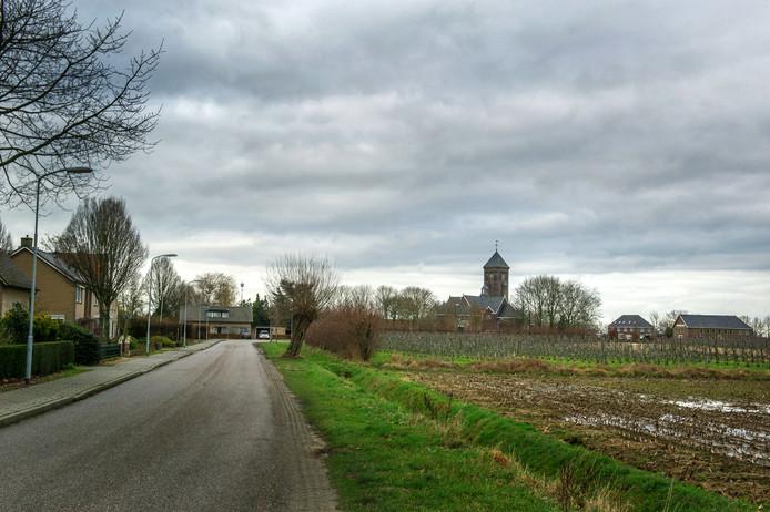 Balgoy - Eveline van Elk - Gelderlander